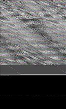 Απόσπασµα χειρογράφου (τετραευάγγελο µε ερµηνεία) του 11ου αιώνα  από τη Μονή Παντοκράτορος, διακοσµηµένο µε πτηνά