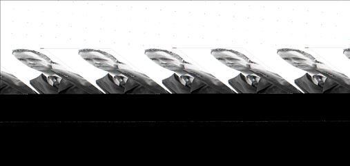 O Πουγιόλ (δεξιά) µε ανοιχτή  την παλάµη στο φινάλε του  θρυλικού ντέρµπι της Ισπανίας.  Ο Μουρίνιο (πάνω αριστερά)  ήταν επικηρυγµένος στη  Βαρκελώνη, (πάνω κέντρο)  ένταση και πάθος και (πάνω  δεξιά) ο Βίγια πανηγυρίζει