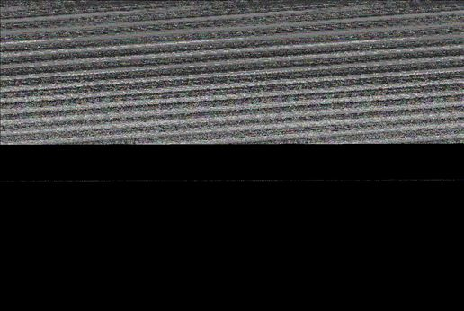 «Η ελληνική κοινή γνώµη χρειαζόταν για µια φορά ΝΑΤΟΪΚΉ και  αµερικανική υποστήριξη  για τις θέσεις της» λέει στον αµερικανό  πρεσβευτή Τσαρλς Ρις η Ντόρα Μπακογιάννη (εδώ  σε φωτογραφία από τον  Ιανουάριο του 2007) λίγες ηµέρες µετά τη µαταίωση της άσκησης  πάνω από  τον Αϊ-Στράτη και ζητά αµερικανική δήλωση στήριξης, προφασιζόµενη τη  µεγάλη  πίεση που δεχόταν στο εσωτερικό ως «φιλοαµερικανίδα»